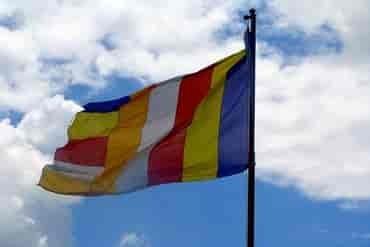 Sino-tibetanska porodica jezika