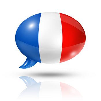 Sudski prevodilac za francuski